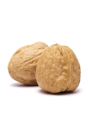 nut shell: Walnut