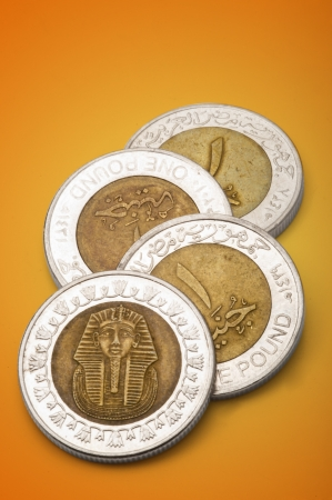 Egyptian Pounds photo