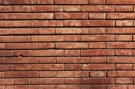 bricks background: Brick Wall Stock Photo