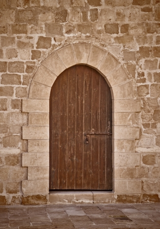 Ancient Door Background photo
