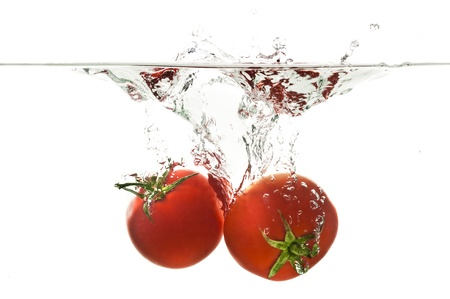 Tomato Water Drop photo