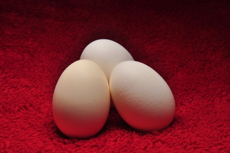 Three White Eggs On Red Fabric photo