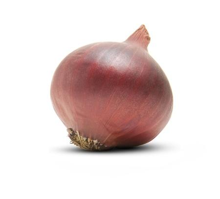 onion isolated: Una cebolla roja aislada en el fondo blanco