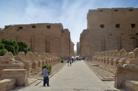 Avenue of Sphinxes. Karnak Temple. Luxor, Egypt photo