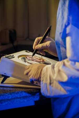 enhanced health: Scientist is Performing Bacteriological Testing in The Laboratory