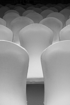 Numerous White Chairs Under Soft Light photo