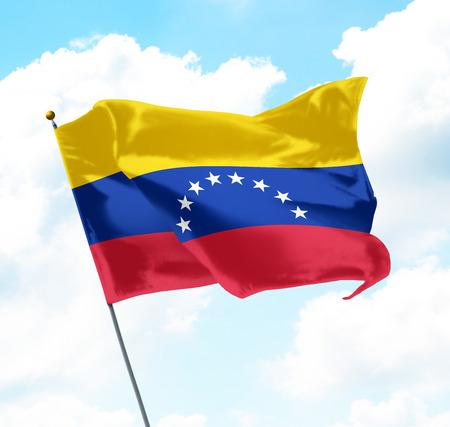 Flag of Venezuela Raised Up in The Sky Standard-Bild