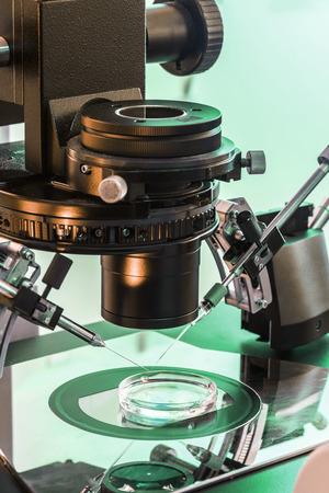 in vitro: A Professional In Vitro Fertilisation Microscope Closeup