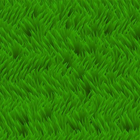 herbal background: Fresh grass background. Green grass field, herbal texture. Summer green lawn, meadow, landscape. Ecology theme