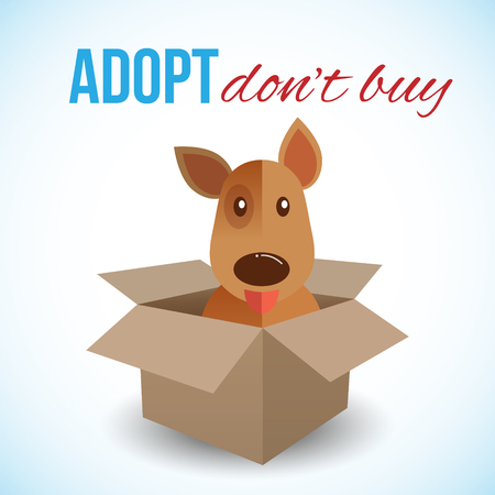 animal shelter: Cute dog in a box with Adopt Dont buy text. Homeless animals concept, pets adoption theme. Vector illustration.
