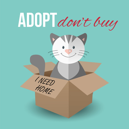 Cute cat in a box with Adopt Don't buy text. Homeless animals concept, pets adoption theme. Vector illustration.