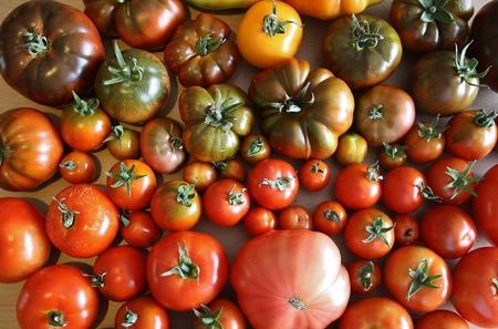 Heirloom Tomatoes Imagens