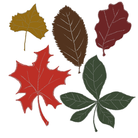 Satz von Autumn Leaves Illustration Lizenzfreie Bilder