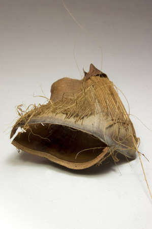 compostion: Compostion of dried coconut tree leaf