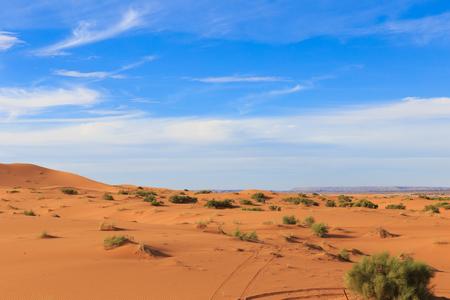 erg chebbi: dune erg Chebbi in the blue sky, sahara desert Morocco