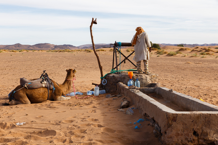 berber: Berber man with camels at the well takes water, Morocco Stock Photo