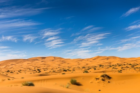 desert sand: dune erg Chebbi in the blue sky, Morocco Stock Photo