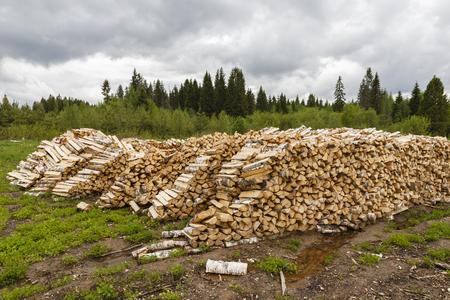 splitting: Pile of chopped firewood logs