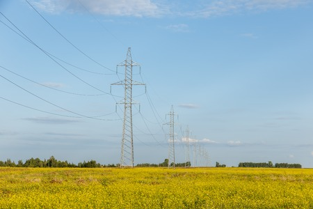 high voltage power line on metal poles in a field with yellow flowers, landscape