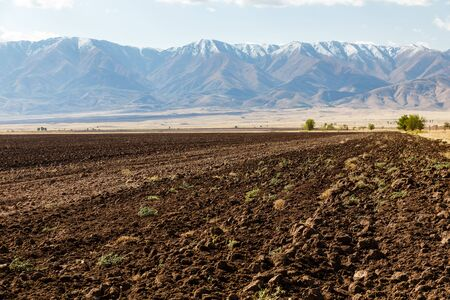 Agricultural land, plowed field against the backdrop of snowy mountains, Kazakhstan