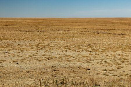 steppe in Kazakhstan, deserted beautiful landscape, dry grass