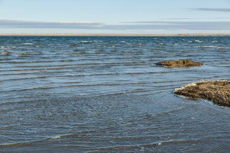 Lake Kamyslybas is a large saltwater lake in Kazakhstan. Фото со стока