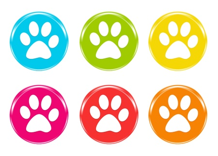 Colorful icons with pet footprints photo