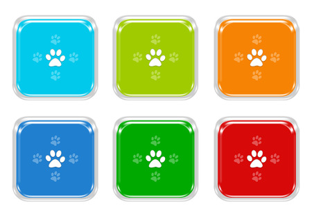 Set of squared colorful buttons with pet footprints symbol in blue, green, red and orange colors photo