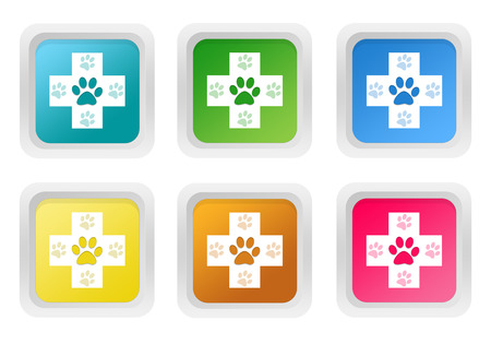 veterinary symbol: Set of squared colorful buttons with veterinary symbol in blue, green, yellow, pink and orange colors Stock Photo