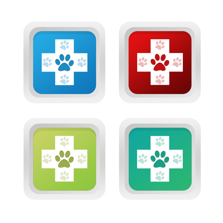 veterinary symbol: Set of squared colorful buttons with veterinary symbol in blue green and red colors Stock Photo