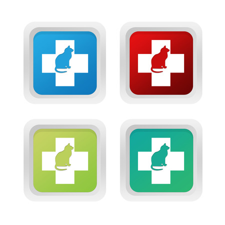 squared: Set of squared colorful buttons with veterinary and cat symbol in blue red and orange colors Stock Photo