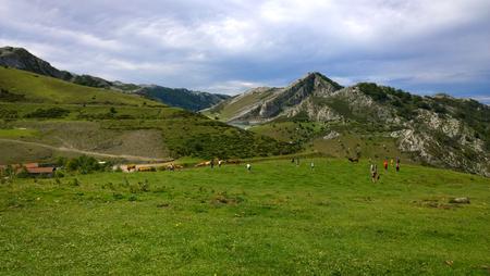 picos: Landscape of Picos de Europa National Park in Asturias, Spain