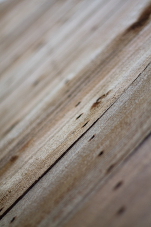 floorboards: A macro image of an old worn deck floor, faded with time highlighting the wear in the boards as well as the line of nails that anchor them down