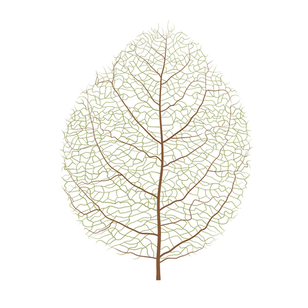 Vector wood leaf.