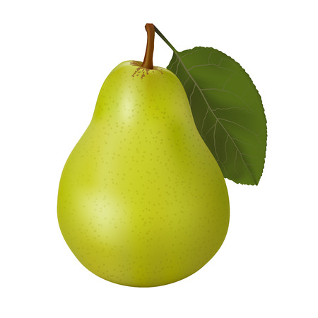 Green pear on a white background. Vector illustration. Çizim