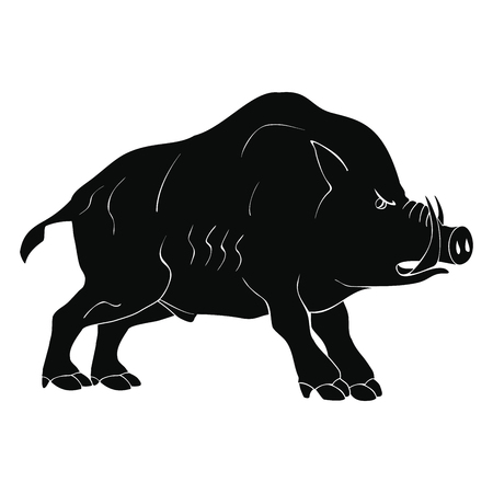 Angry dangerous boar. Illustration