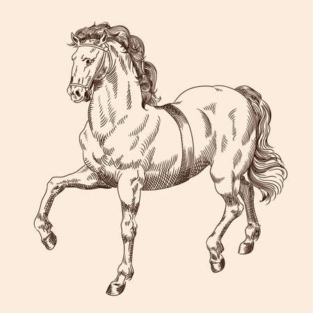Galloping horse with harness isolated on beige background. 矢量图像