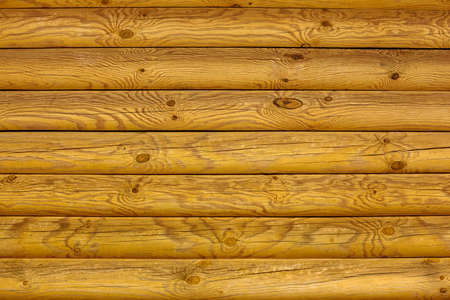 Yellow wood texture for background in design. An old wall of pine logs.