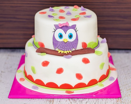 Beatiful Cake wit Baby Owl on a Branch