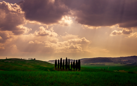 A Cloudy Day With Cypress Trees From The Val D Orcia Stock Photo