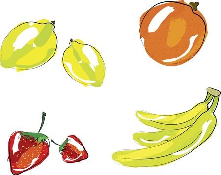 ベクトル イラスト - 果物のセット