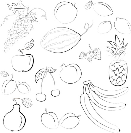 pomegranate juice: illustration - set of fruits
