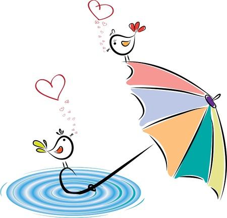 lluvia paraguas: Aves en el amor después de la lluvia.