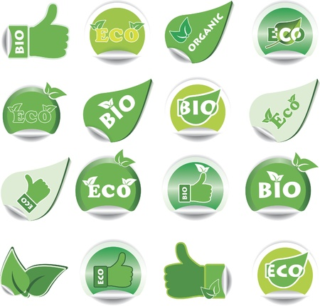 Set of green BIO and ECO stickers. Vector illustration Vector