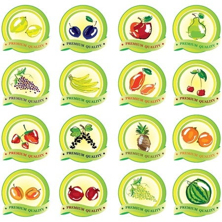 Set of vector fruit icons  Illustration
