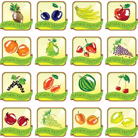 Set of art fruit icons  Illustration Vector