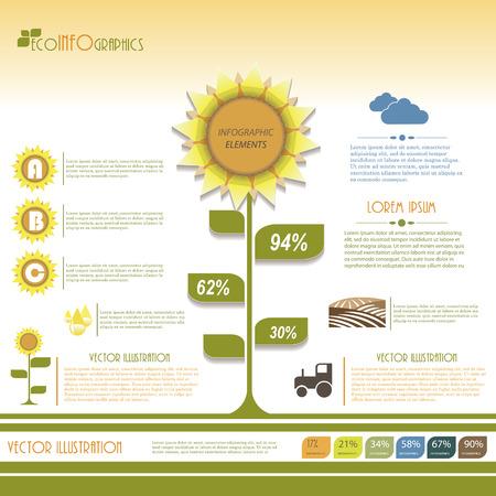 sunflower field: Modern infographic green template design  Vector illustration Illustration