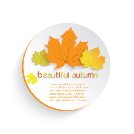 turn yellow: Autumn maple leaves with place for text.