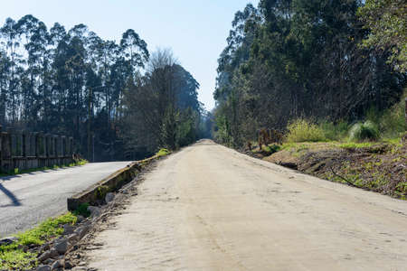 dirt road through the trees, the blue sky Stock Photo