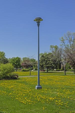 Lightlamp on Park